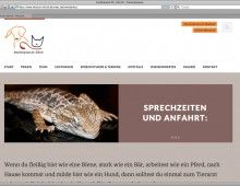 Website Dr. Ullrich